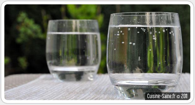 Blog cuisine bio test : eau gazeuse, limonade et soda maison