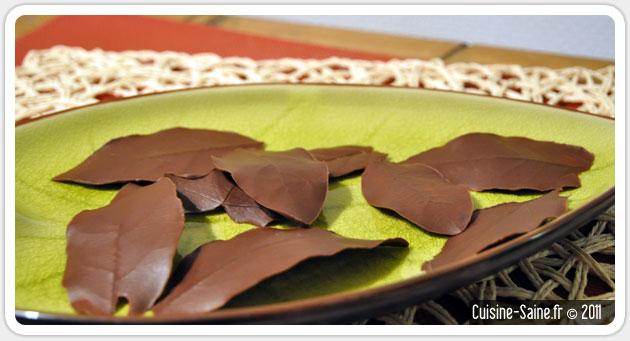 Blog cuisine bio : feuilles en chocolat