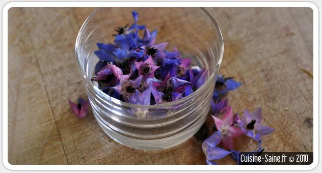 blog cuisine bio test les fleurs comestibles la fleur. Black Bedroom Furniture Sets. Home Design Ideas