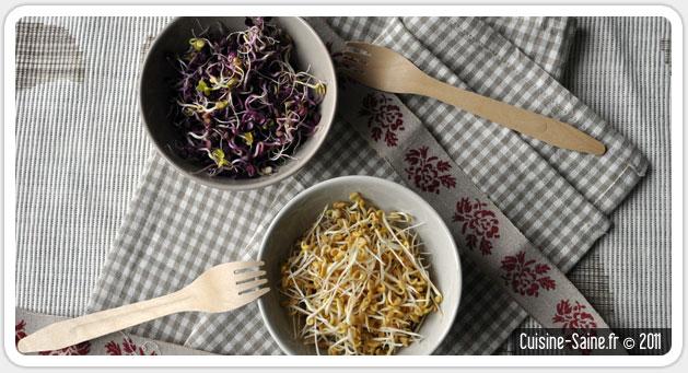 Les graines germ es cuisine saine - Blog cuisine bio saine ...