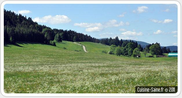 Escapade gourmande : dans le Jura au pays du comté