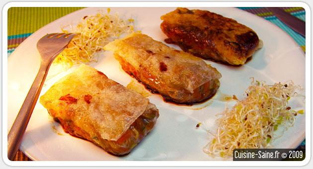 Recette bio : nems d'aubergines à la viande hachée