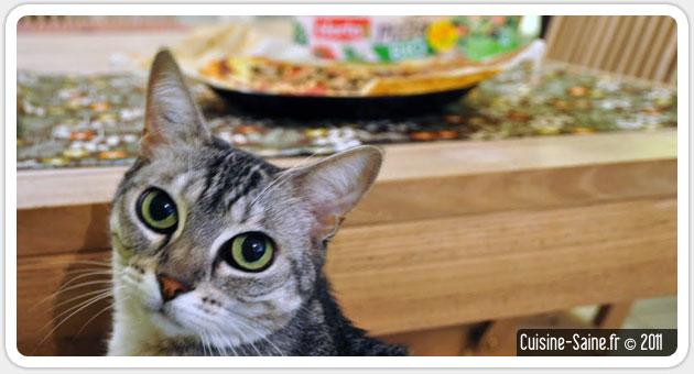 Blog cuisine bio test : pizza champignon jambon fromage