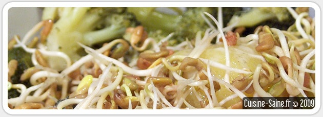 Recette minceur de purée de brocolis aux graines germées de fenugrec