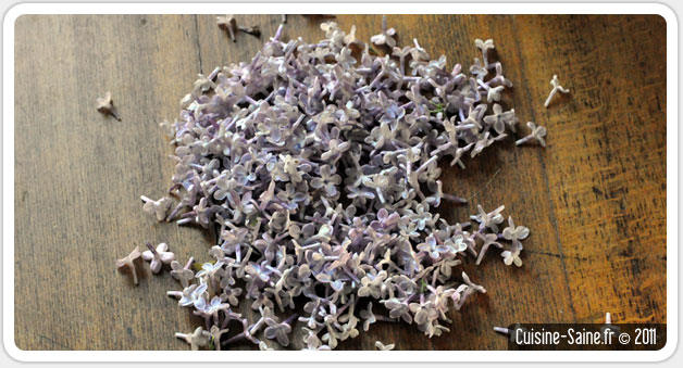 gelée de lilas