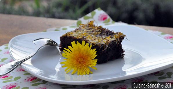 Recette bio : fondant au chocolat et pissenlit