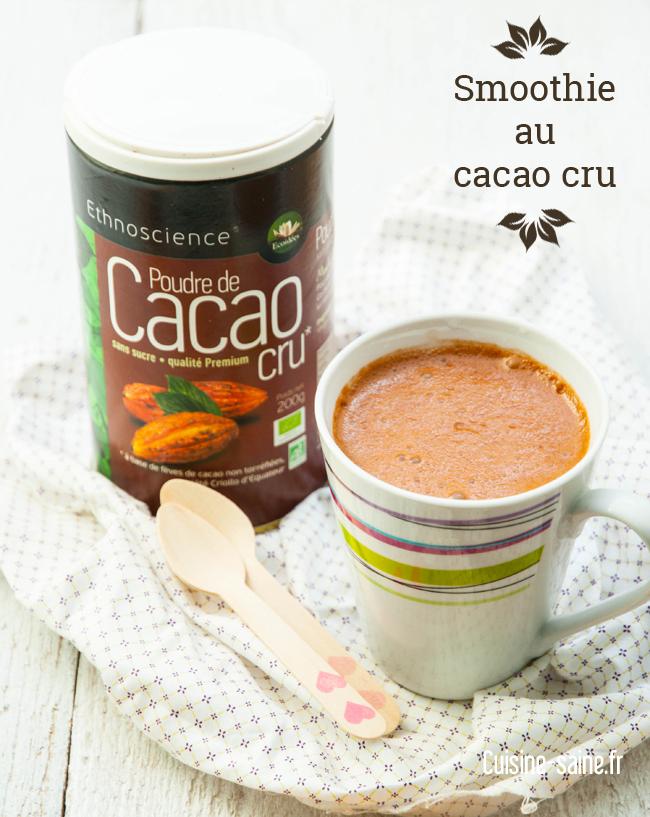 Smoothie au cacao cru