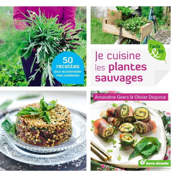 Je cuisine les plantes sauvages blog cuisine saine sans - Je cuisine sans gluten ...