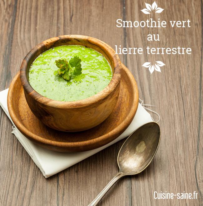 Je cuisine les plantes sauvages blog cuisine saine sans gluten sans lactose - Cuisine plantes sauvages ...