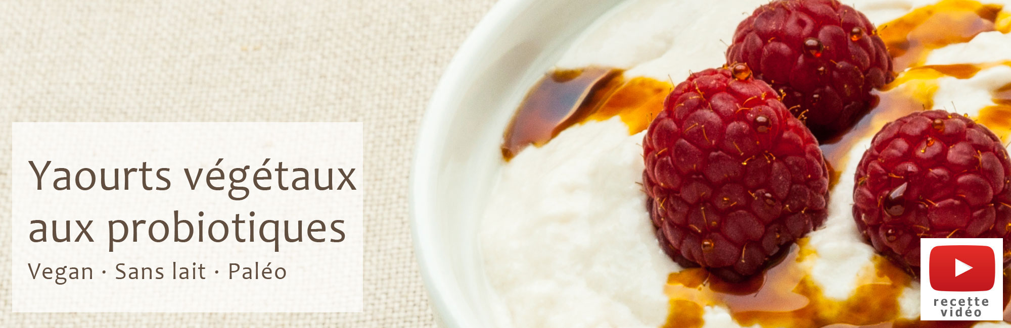 yaourts v g taux aux probiotiques vegan pal o blog. Black Bedroom Furniture Sets. Home Design Ideas