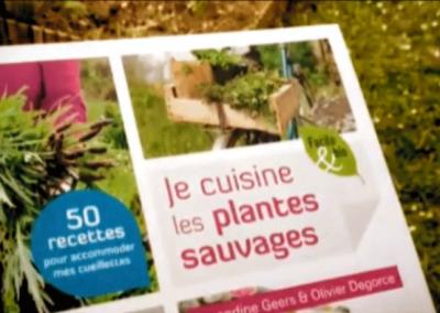 Je cuisine les plantes sauvages – Amandine Geers et Olivier Degorce