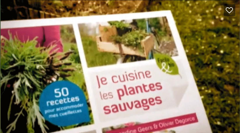 Je cuisine les plantes sauvages amandine geers et olivier degorce blog cuisine saine sans - Cuisine plantes sauvages ...