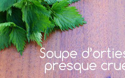 Soupe à l'ortie (presque crue) et vertus de l'ortie