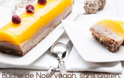 Bûche de Noël vegan sans gluten, sans sucre, crue et paléo !