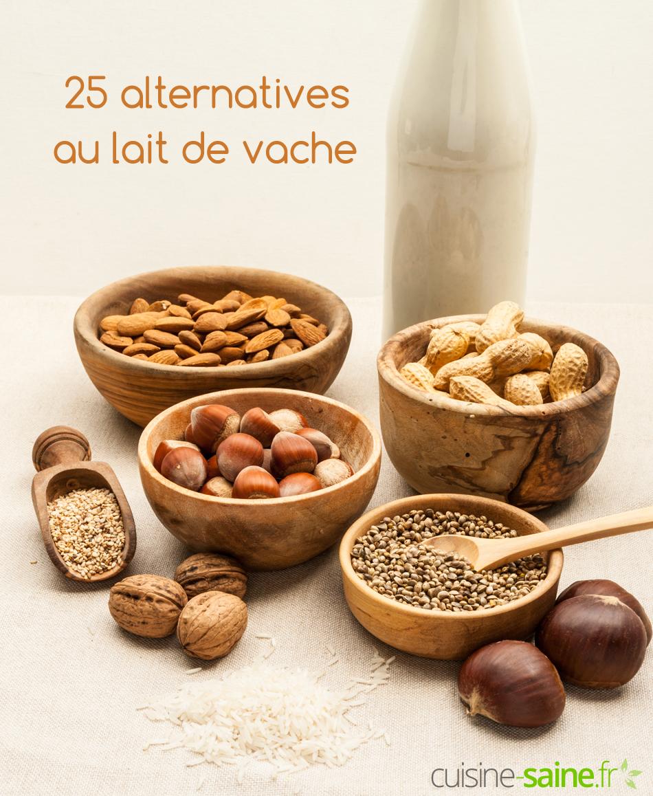 Par quoi remplacer le lait de vache ? 25 alternatives !