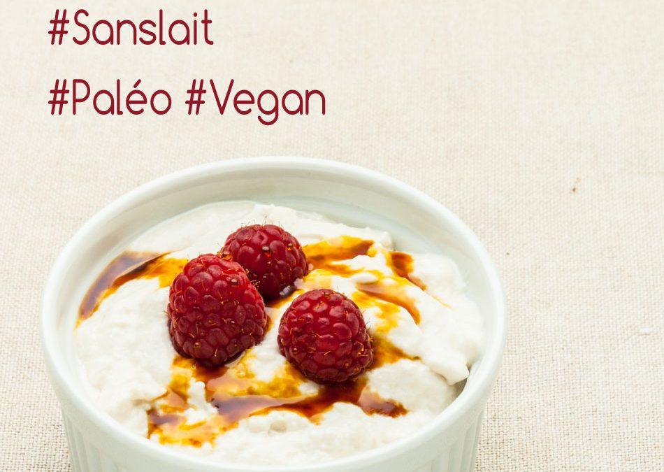 Yaourts végétaux aux probiotiques – Vegan & Paléo