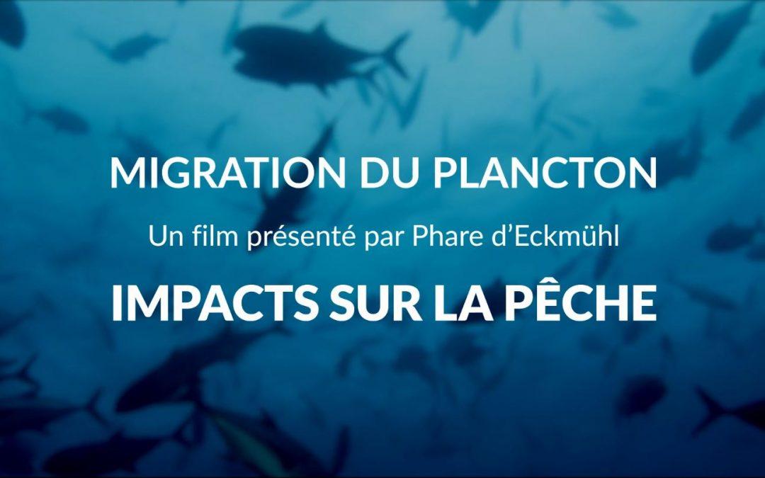 Impact du réchauffement climatique sur la pêche : Phare d'Eckmühl s'associe à Tara Expéditions pour sensibiliser le grand public