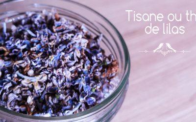 Comment préparer une tisane de lilas ou un thé vert au lilas ?