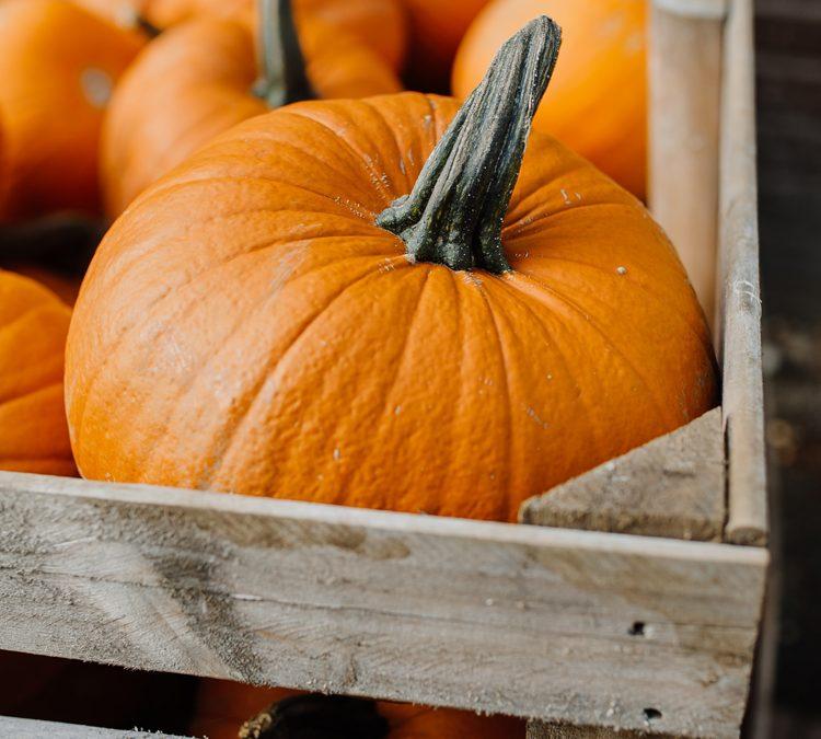 Comment préparer des plats d'automne sains et savoureux ?