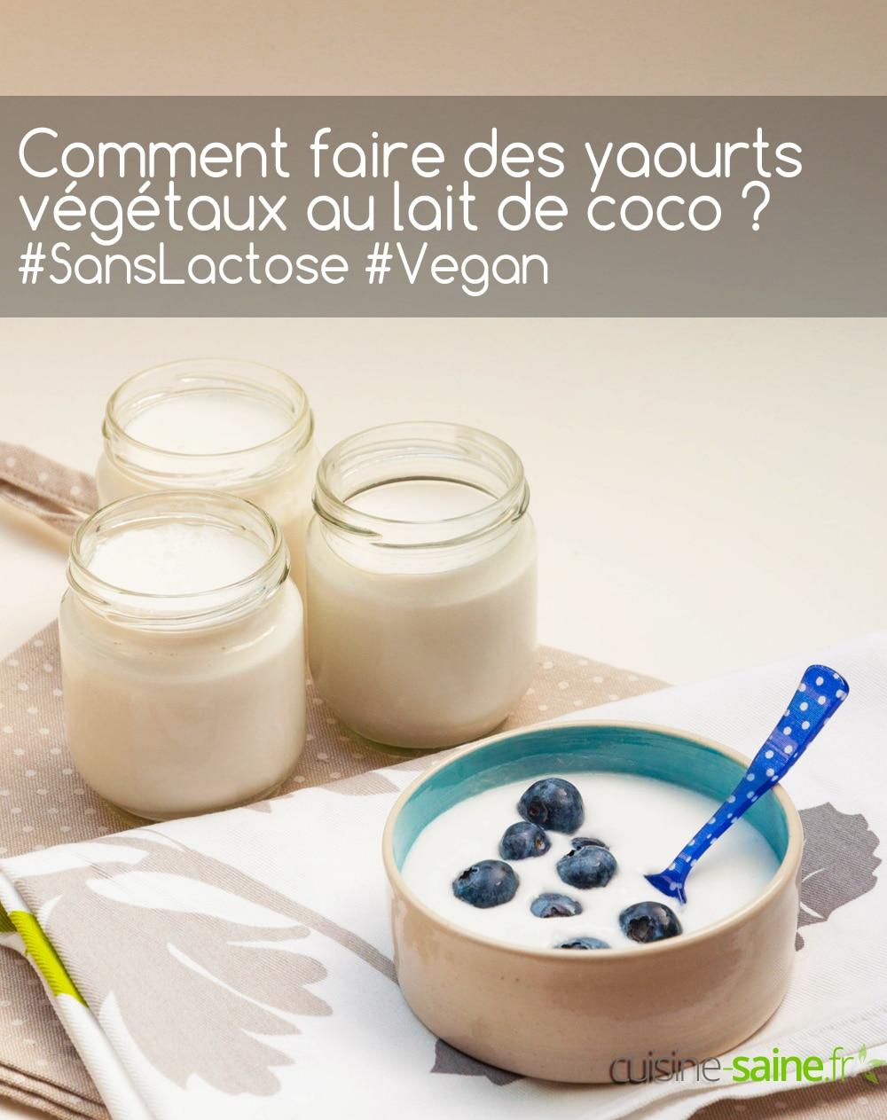 Comment faire un yaourt végétal au lait de coco vegan sans lactose ?