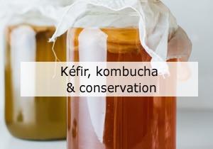 Kéfir, kombucha et conservation