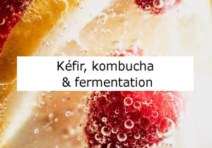 kefir et kombucha et fermentation